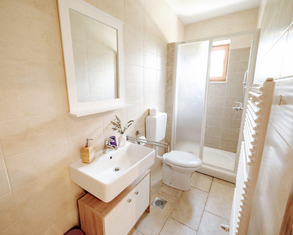 Das Badezimmer besteht aus einer Toilette und einer Dusche.