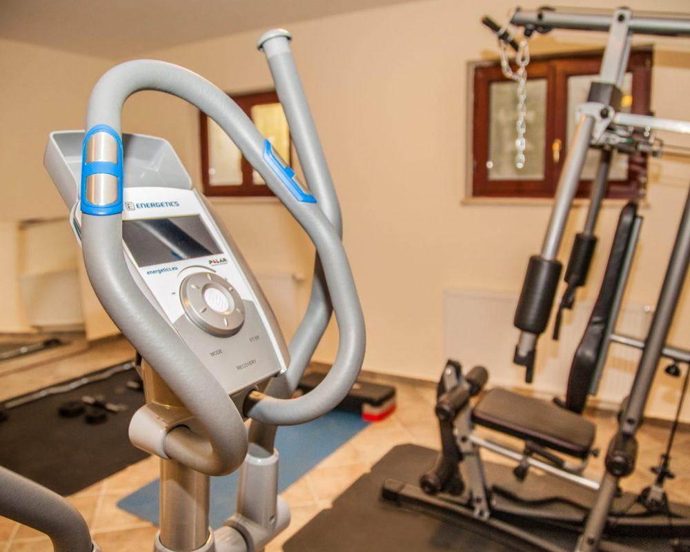 Die Villa Alma auf Istrien hat einen Fitnessraum mit Crosstrainer, Kraftstation und weiteren Fitnessgeräten.